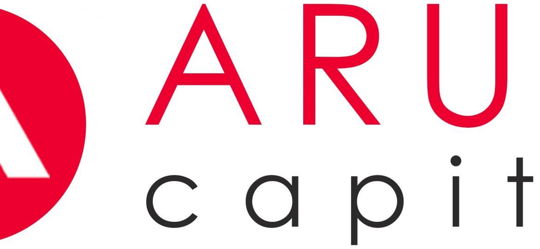 Как работает Arum Capital?