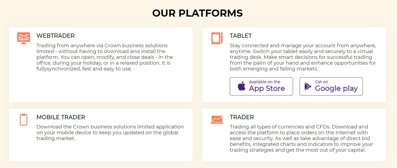 Характеристика проекта Crown business solutions